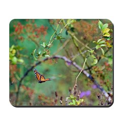 Free to Fly Mousepad