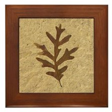 Feather Lobe Oak Leaf Image Framed Ceramic ArtTile