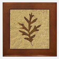 Feather Lobe Oak Leaf Image Framed Ceramic ArtTile