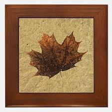 Crown Maple Leaf Fossil Framed Ceramic Art Tile