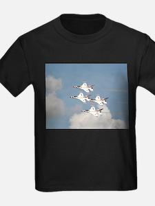 USAF Thunderbirds T