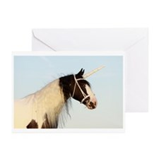 Tinker horse Greeting Cards (Pk of 10)