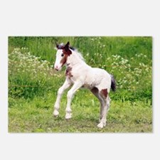 Funny Tinker horse Postcards (Package of 8)