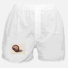 Gil Warzecha Boxer Shorts