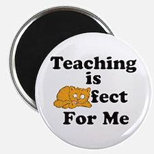 Cute Teachers appreciation Magnet