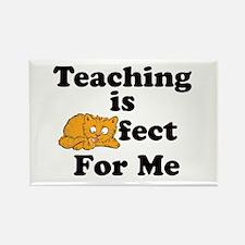 Cool Teachers appreciation Rectangle Magnet (10 pack)