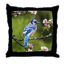 Blue Jay Bird Photo Throw Pillow