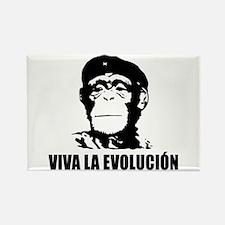 Atheism Evolution Rectangle Magnet