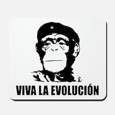 Atheism Evolution Mousepad
