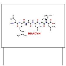 Bradyn name molecule Yard Sign