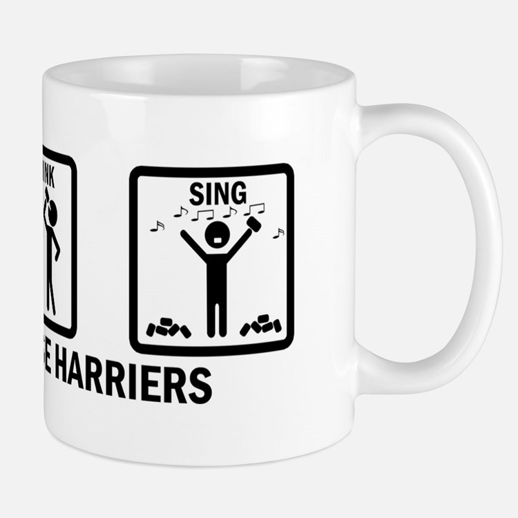 Run, Drink, Sing Mug