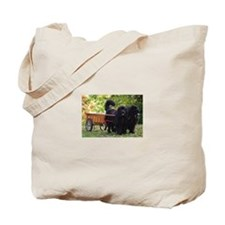 Newfie Draft Shop Tote Bag
