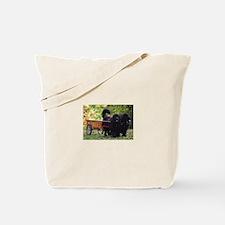 Newfie Draft Shop Tote Bag