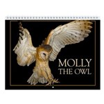 2011 **SECOND CLUTCH** Wall Calendar