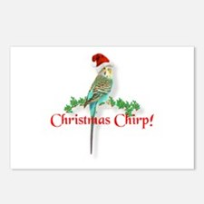 Christmas Budgie Postcards (Package of 8)