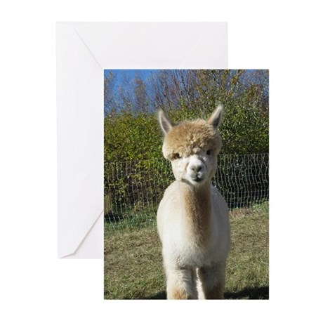 Ain't She Cute! Greeting Cards (Pk of 10)