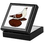 Silesian Swallow Pigeon Keepsake Box