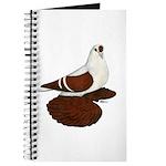 Silesian Swallow Pigeon Journal