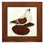 Silesian Swallow Pigeon Framed Tile