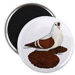 """Silesian Swallow Pigeon 2.25"""" Magnet (100 pac"""