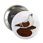 """Silesian Swallow Pigeon 2.25"""" Button (10 pack"""