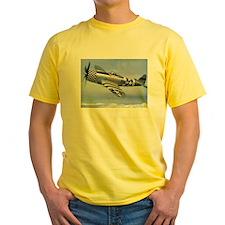 P-47 Thunderbolt T
