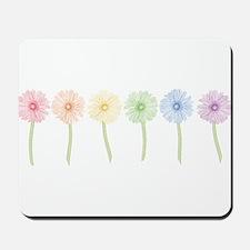 Rainbow Daisies Mousepad