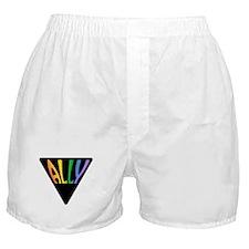 Gay Ally Rainbow Triangle Boxer Shorts