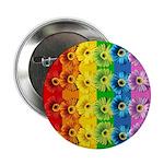 Rainbow Daisies 2.25