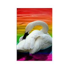 Rainbow Swan Rectangle Magnet