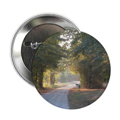 Peaceful rural route 2.25