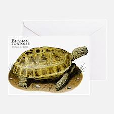 Russian Tortoise Greeting Card
