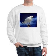 Serious Flier Sweatshirt