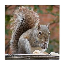 Squirrel Tile Coaster
