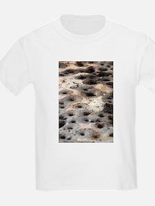 Gil Warzecha T-Shirt