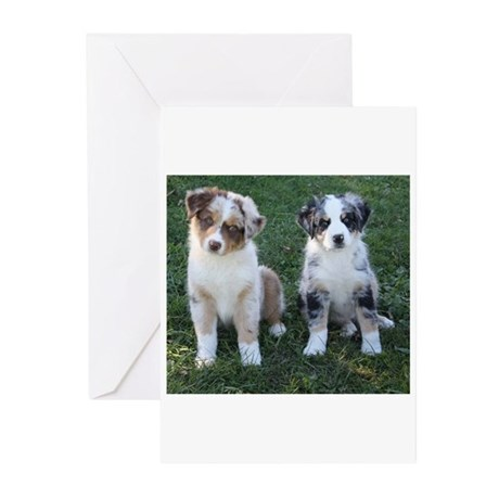 Friends Forever Greeting Cards (Pk of 10)