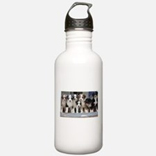 7 Hearts of Love Sports Water Bottle