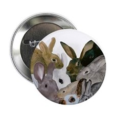"""It's...bunnies..."" 2.25"" Button"
