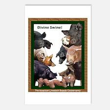 """Divine Swine!"" Postcards (Package of 8)"