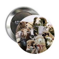 """Round Sheep Collage 2.25"""" Button (10 pack)"""