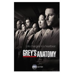 Grey's Anatomy 2010 Posters