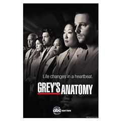 Grey's Anatomy 2010 Posters
