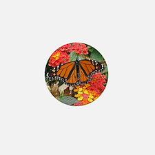 Monarch Mini Button (10 pack)