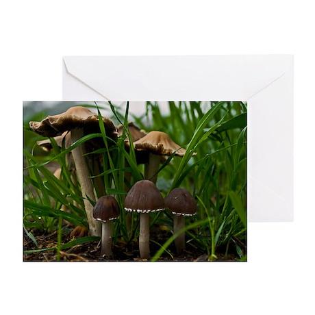 We Three Mushrooms 3 Greeting Cards (Pk of 20)
