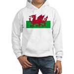 Welsh Flag Hooded Sweatshirt