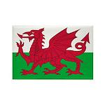 Welsh Flag Rectangle Magnet (100 pack)