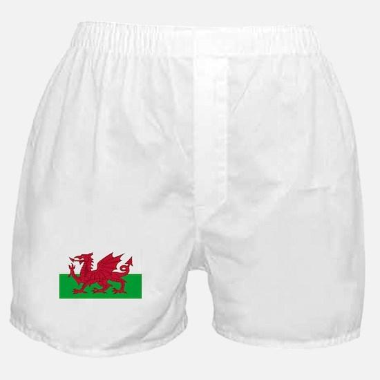 Welsh Flag Boxer Shorts