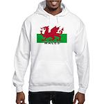 Welsh Flag (labeled) Hooded Sweatshirt