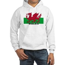 Welsh Flag (labeled) Hoodie