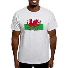 Welsh Flag (labeled) T-Shirt
